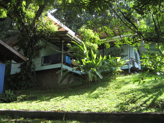 Albergue Alma de Hatillo: another view of our cabin