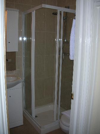 Winchester Hotel: El mini cuarto de baño pero con ducha genial