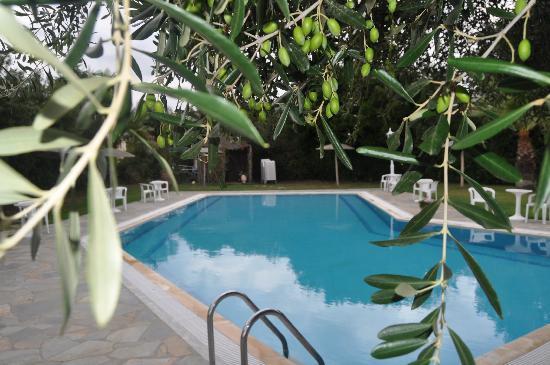 Panorama Hideaway: pool