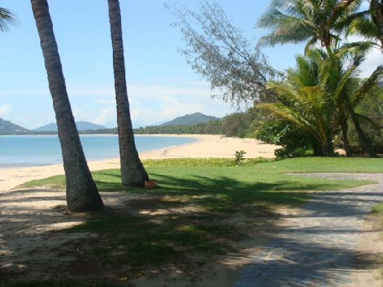 palm cove beach foto van paradise on the beach resort. Black Bedroom Furniture Sets. Home Design Ideas