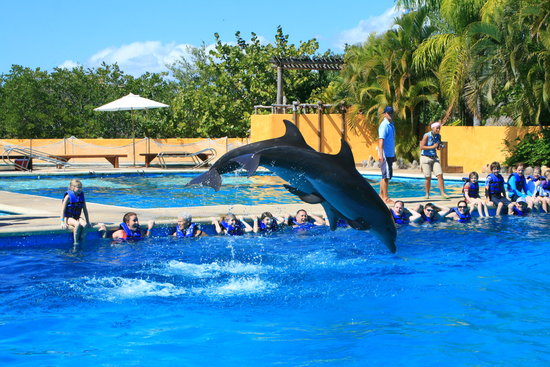 Vallarta Discovery Day Tours