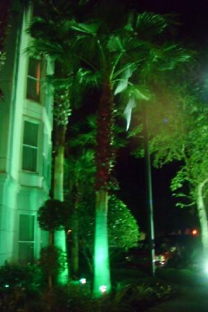 Homewood Suites Orlando-International Drive/Convention Center: Outside the hotel at night