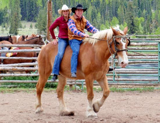 Rainbow Trout Ranch: Enjoying The Draft Horses Before The Rodeo