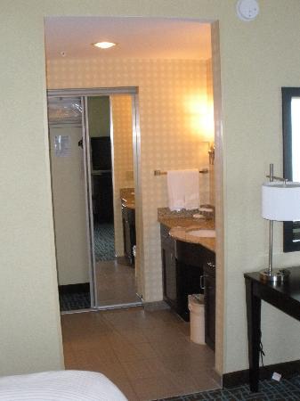 Homewood Suites by Hilton Fort Myers Airport / FGCU: Bathroom