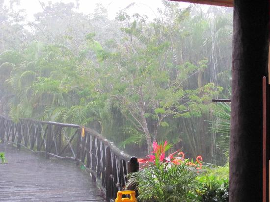 We even got to see a Tropical Shower Monsoon to us