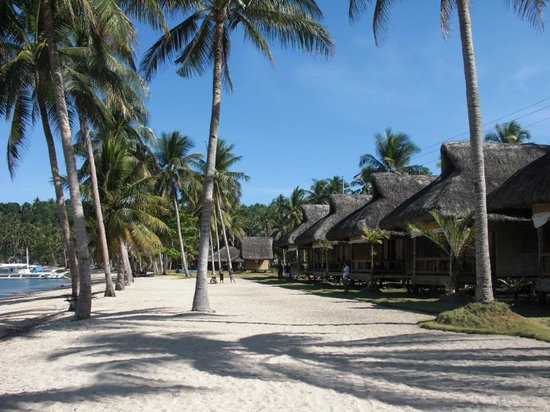 Donsol, Filippine: Ticao Island Resort
