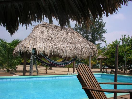 Lost Reef Resort and Hideaway : View from the poolside palapa