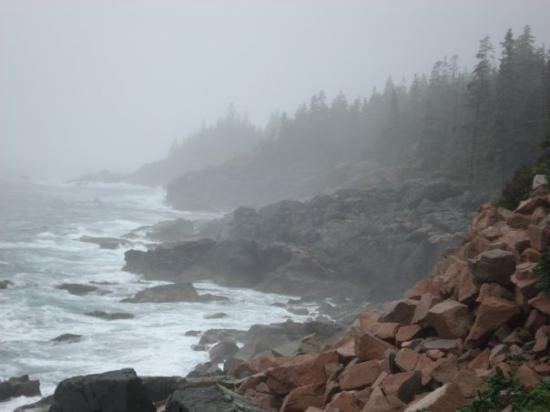 Bar Harbor, ME: Acadia