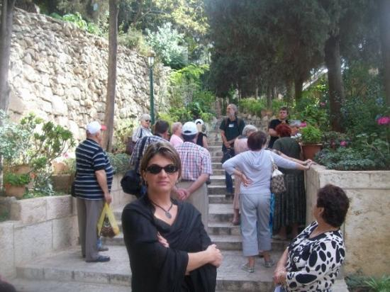 Garden of Gethsemane: Entering the Garden at Gethsemane (setting of Christ sweating blood while praying, prior to his