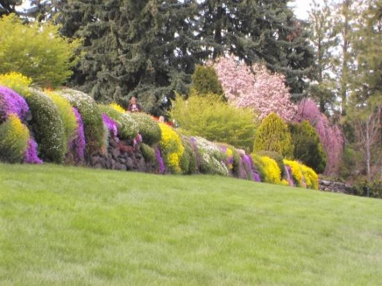 Manito Park - Spokane, Washington - Immaculate Perennial and Rose ...