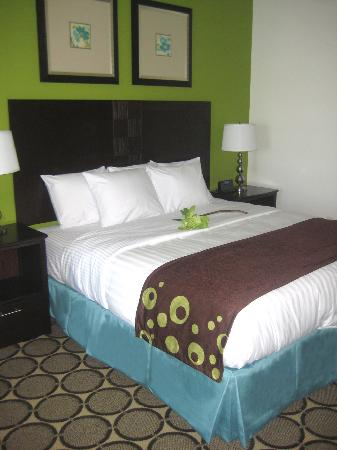 Best Western Douglas Inn & Suites: Guest Room 2