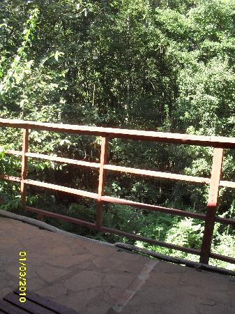 Refugio Verde: El arroyo desde la galeria de Guayuvira