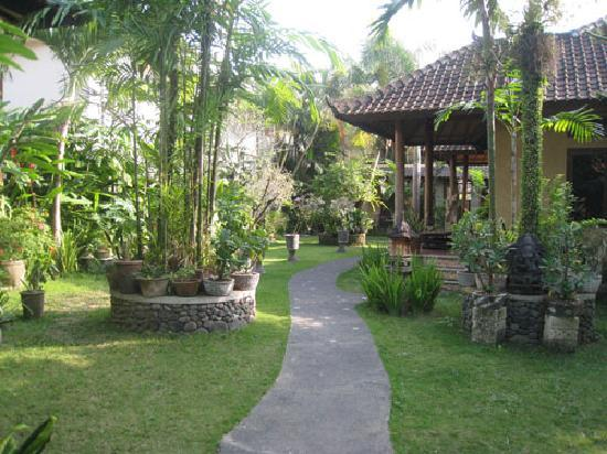 Sehati Guesthouse: 庭