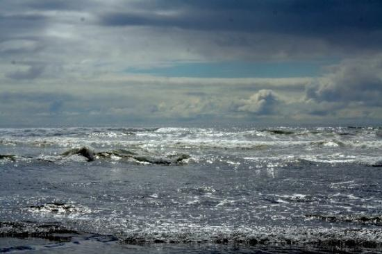 Rough Waters Picture Of Ocean Shores Washington