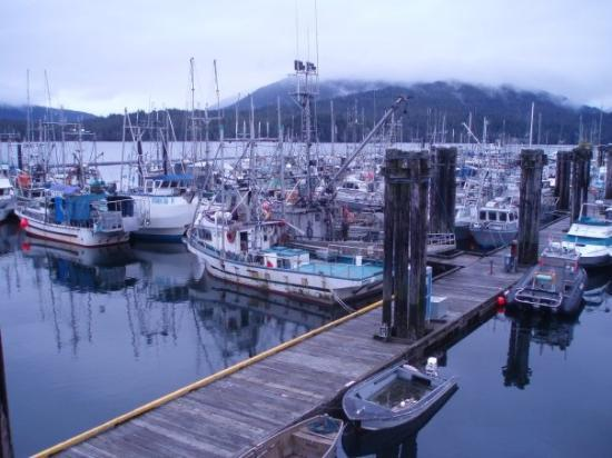 Prince Rupert, Canada: Here's some more boats...