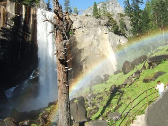 Yosemite Valley: I kept going to the top of the falls and was rewarded with this beautiful sight!