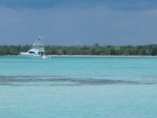 Isla Saona: Beautiful, pristine waters of Saona Isle! Sat. 3/15/08