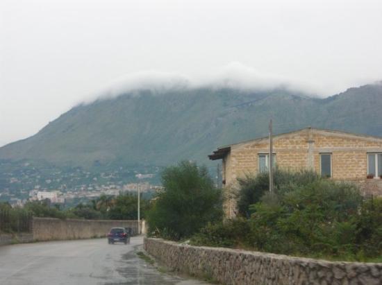 Carini Foto