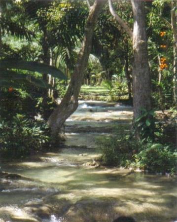 Ocho Ríos, Jamaica: Dunns River Falls...Ochos Rios Jamaica