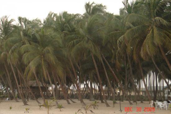 Bilde fra Lagos