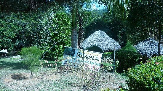 Mayfield Falls: Arrivée à Mayfield