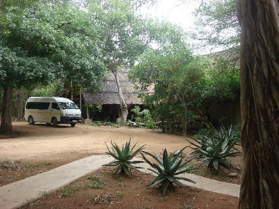 Thornybush Game Lodge: l` entrance