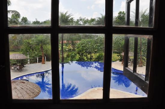 Evolve Back, Coorg: The pool by the restaurant...