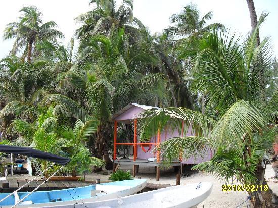 Gaviota Coral Reef Resort: our cabin
