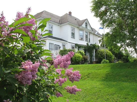 The Nelson House Bed and Breakfast: In the back yard in lilac time!