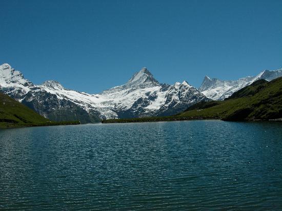 Parkhotel Schoenegg : Grindelwal Eiger Mönch Jungfrau