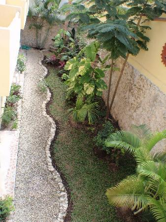 Posada Luna del Sur: View of the interior garden.