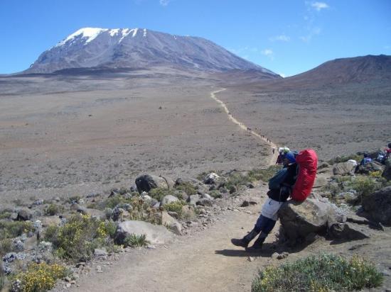 Bilde fra Mount Kilimanjaro