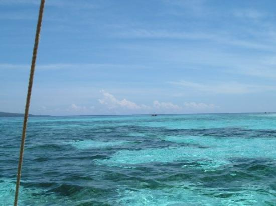 Mambajao, Filipinas: Did some Snorkeling in this area not far from shore on Mantigue island. June 2009