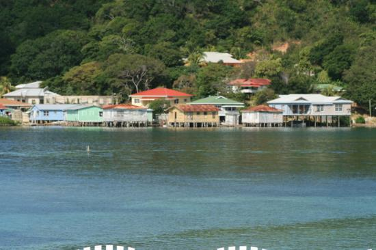 Roatan, Honduras: This is Calabash Point from our approach from Oakridge. Cute from a distance!!!