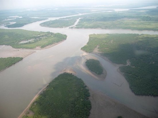 Port Harcourt, Nigeria: The niger delta from the chopper.