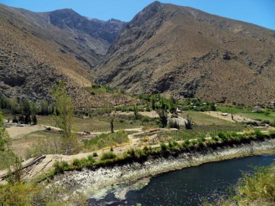 Pisco Elqui, Chile: Valle del Equis, Chile