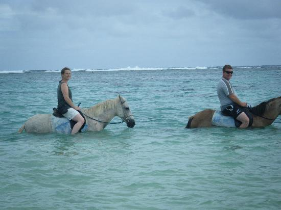 Titikaveka, Islas Cook: 3 hour horse trek just down the road