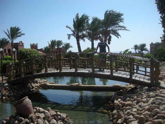 Charmillion Sea Life Resort: villaggio