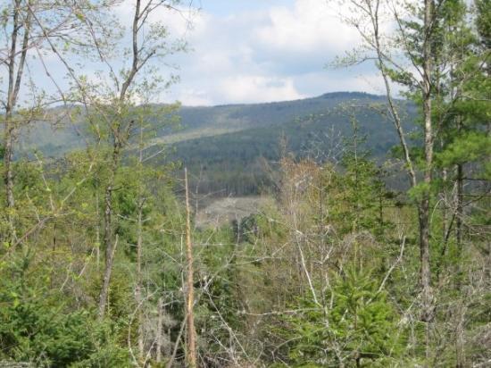 Rivers Edge Property Llc