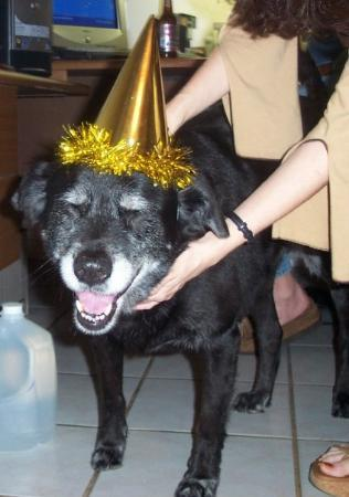 Miramar, Floride : Moe celebrating New Years Eve