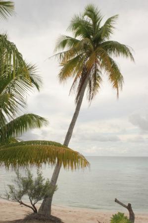 Tahiti, Fransk Polynesia: On the excluded island of Rangiroa!