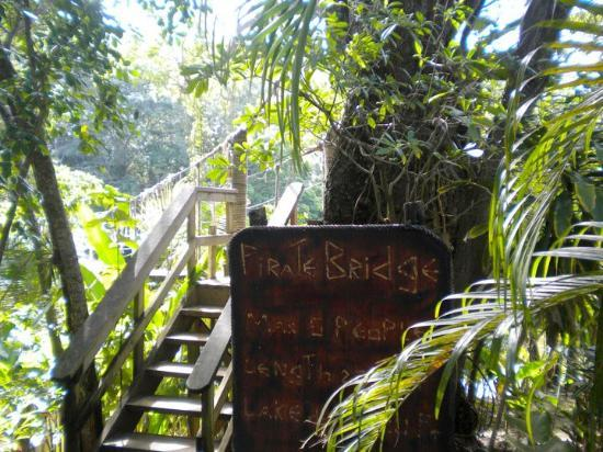 Roatan, Honduras: The fun bridge :)