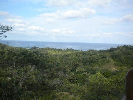 Roatan, Honduras: Honduras!