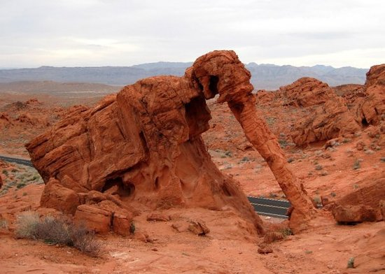 Elephant Rock Nevada 2018 All You Need To Know Before