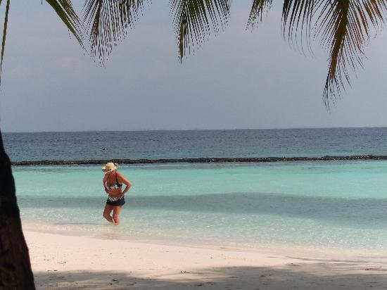 Baros Maldives: View from bar