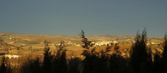 B & B in Limoux at Domaine St George: Early morning view from our room