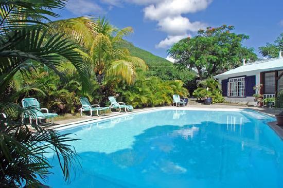 Les Lataniers Bleus: Swimming pool