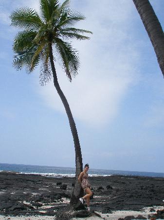 Pu'uhonua O Honaunau National Historical Park: hawaii 09