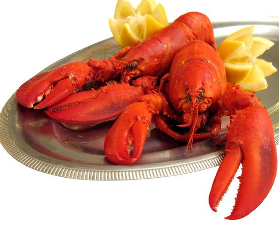 Mount Vernon Restaurant: Home of the Twin Lobster