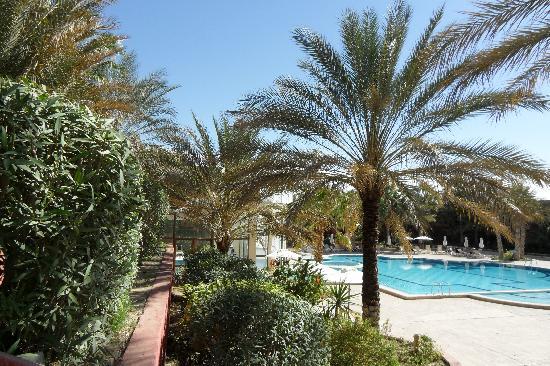Palm Beach Palace Tozeur: La piscine extérieure